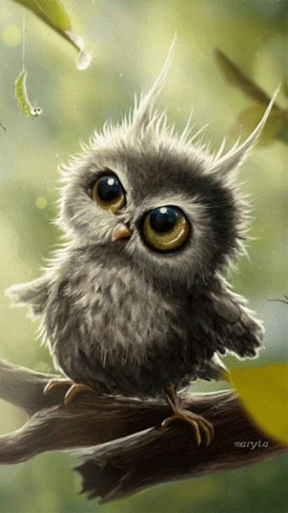 Owls Animals Sweet Funny Autumn Fall Uploaded