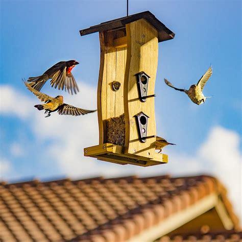 architecture bird house birdhouse 183 free photo on pixabay