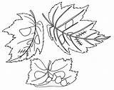 Coloring Leaves Printable Fall Falling November Leaf Afkomstig Popular sketch template
