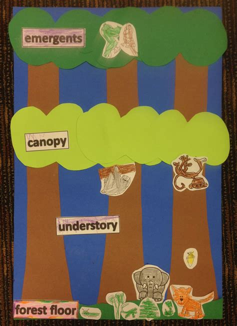 forest animals preschool theme rainforest theme layers of the forest craft www 891