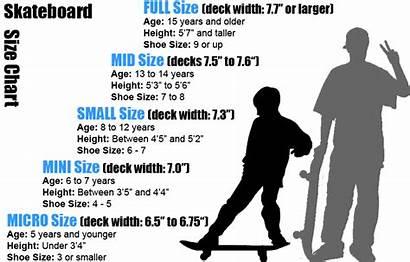 Skateboard Beginner Should Board Decks Chart Longboard