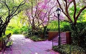 Japanese gardens HD Desktop Wallpaper