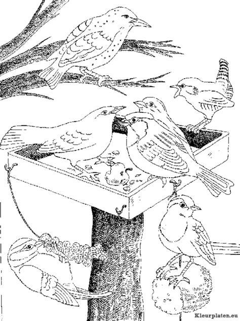 Kleurplaat Vogels In De Winter by Vogels Kleurplaten Kleurplaten Eu
