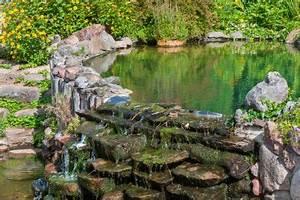 Gartenteiche Aus Kunststoff : gartenteich aus steinen anlegen so wird 39 s gemacht ~ Orissabook.com Haus und Dekorationen