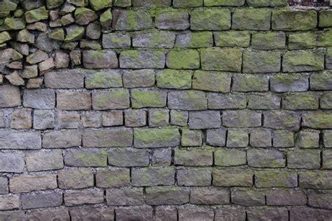texturex brick rock stone algea grey green uneven dirty