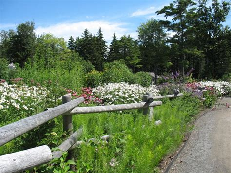 split rail fence landscaping top 86 ideas about split rail fences on pinterest the splits country barns and post and rail