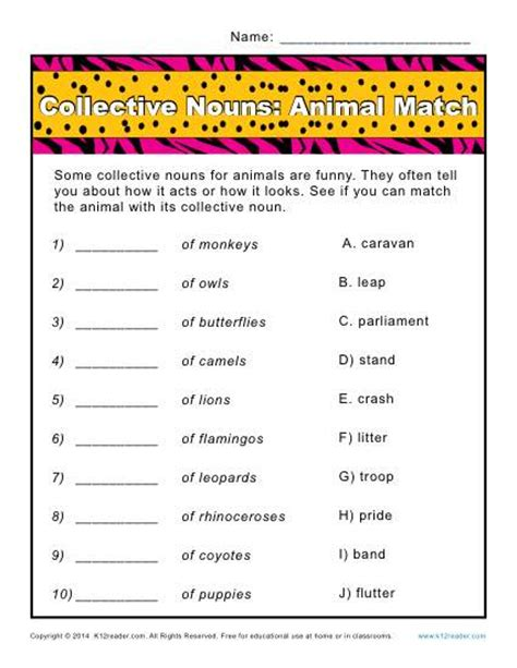 collective noun worksheets animals match