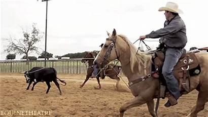 Rodeo Cowboys