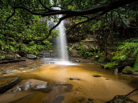 Beautiful Waterfall Deep In The Jungle Adeline Falls South ...