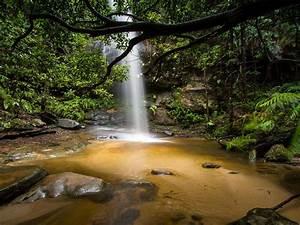 Beautiful, Waterfall, Deep, In, The, Jungle, Adeline, Falls, South, Lawson, Australia, Hd, Desktop, Wallpaper