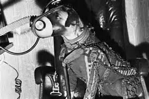 Sputnik 2 Laika Dog
