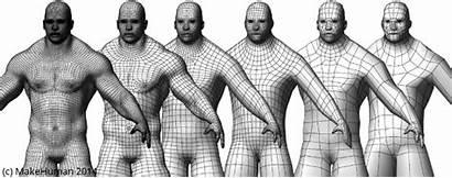 Topologies Topology Mesh Makehuman Alternative Professional Animation