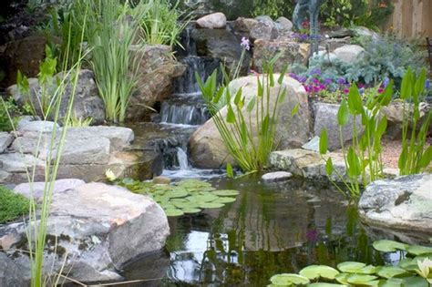 Outdoor Living With Water Gardens  Town & Country Living