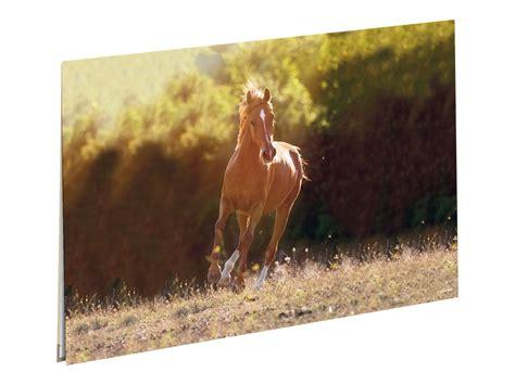 oberthur cheval complice sous sous
