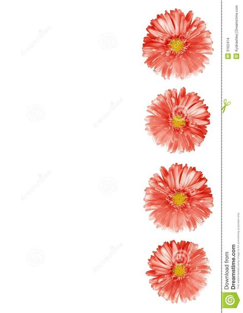 abstract flower border stock photo image  pink descriptive