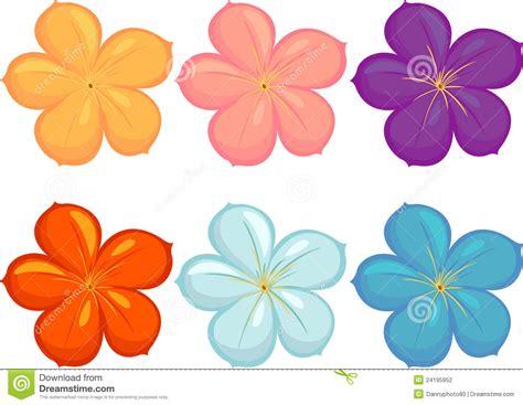 alle verschillende bloemen bloemen van verschillende kleuren stock illustratie