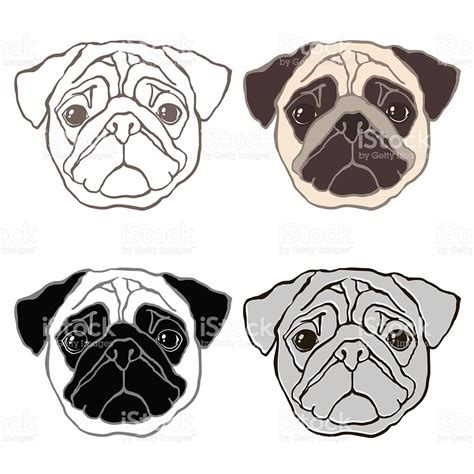 Pug Face Drawing At Getdrawingscom Free For Personal