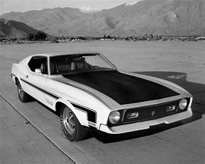 15 Fastest Ford Mustangs Ever Made In History - Look4ward