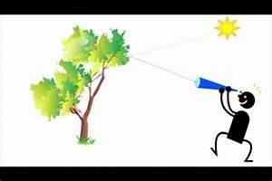 Lichtbrechung Berechnen : video strahlenmodell in der physik so erkl ren sie ~ Themetempest.com Abrechnung