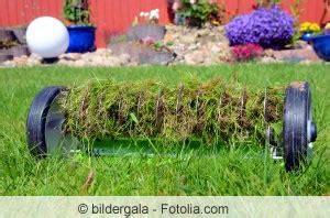 Pilze Im Garten Bodenbeschaffenheit by Rasenprobleme Erkennen Und Beheben Hausgarten Net