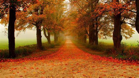 风景秋天秋景4k壁纸_图片编号427-壁纸网