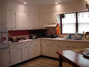 Kitchen cheap contemporary kitchen cabinets laurieflower 011 for Inexpensive modern kitchen cabinets