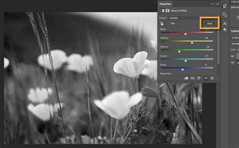 combine black  white  color   photo adobe photoshop cc tutorials