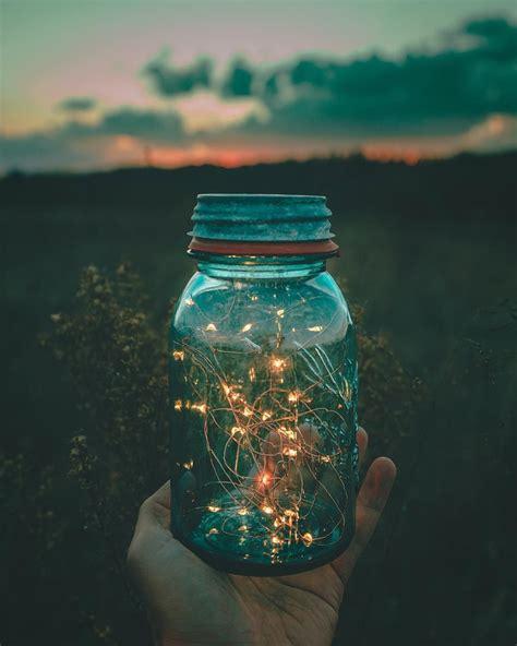 pin         fairy light photography