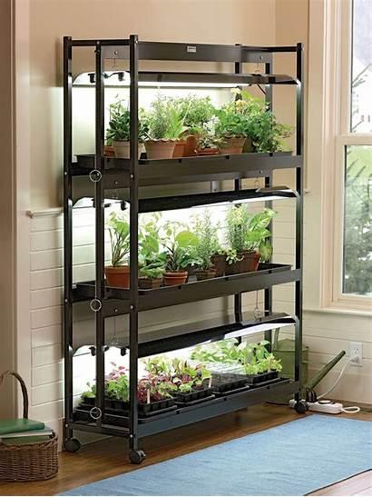 Garden Tier Grow Indoor Sunlite Plants Stand