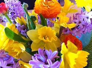 Spring Flowers  Get A Blast Of Color With No Fussy