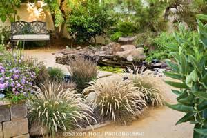 California Drought Tolerant Backyards