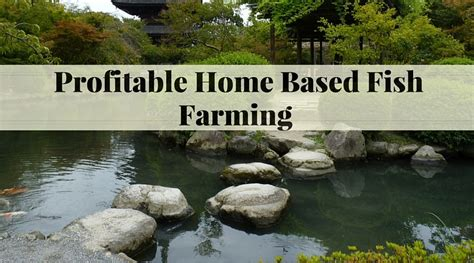 Home Aquaculture Backyard Fish Farming by Fish Farming How To Make It Profitable For Small