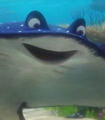 Voice Of Mr. Ray - Finding Nemo | Behind The Voice Actors