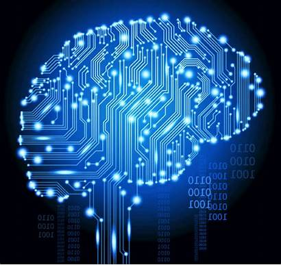 Learning Neural Scratch Building Circuit Networks Understanding