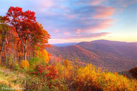 fall colors in virginia where to find the best virginia fall foliage this year