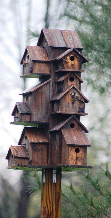 bird roosting boxes images bird house plans bird housesfeeders nesting boxes