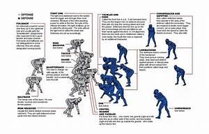 Defensive Line Academy