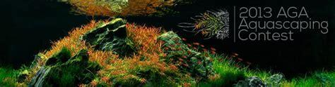 Aga Aquascaping Contest by 2013 Aga Aquascaping Contest Aquatic Garden 320l Or Larger