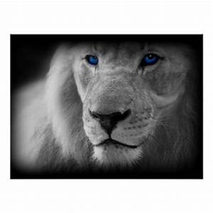 Black And White Lion Art & Framed Artwork | Zazzle
