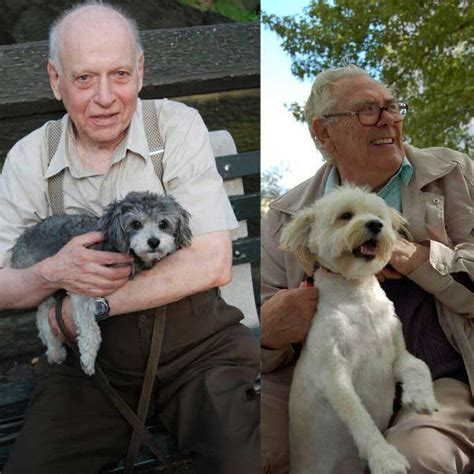 dogs cats better than why prove reasons these companionship elderly