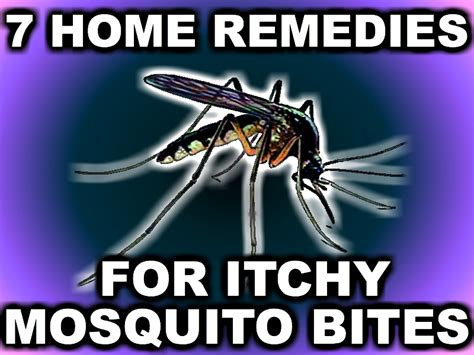 7 Home Remedies For Itchy Mosquito Diy Christmas Craft Gifts Crafts For The Elderly Cute Toddlers Toilet Paper Roll Candy Cane Glass Block Lights Easy To Sell