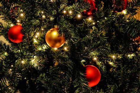 free photo christmas tree lights balls red free
