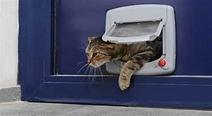 installer une chatiere sur porte With porte de garage coulissante avec installer chatière porte pvc