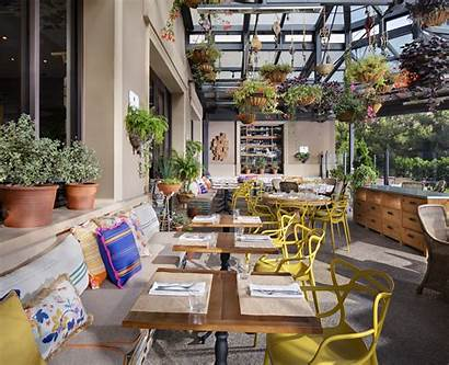 Newport Beach Cucina Enoteca Restaurants California Patio
