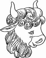 Buffalo Coloring Bison Head Drawing Animals Getdrawings sketch template