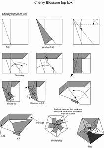 17 Best Images About Modular Origami Boxes On Pinterest