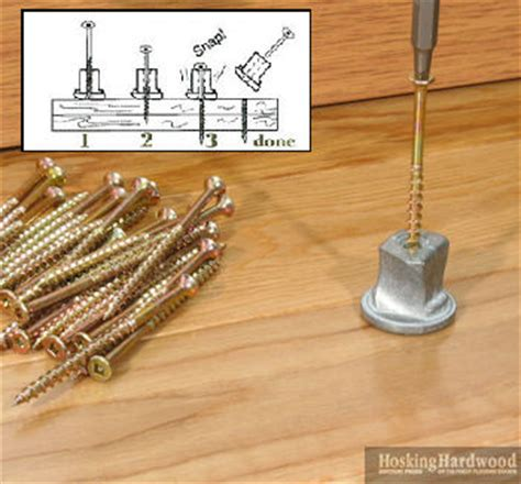 This House Squeaky Floor Screws by Tools Accessories Squeaky Floor Repair Hardwood