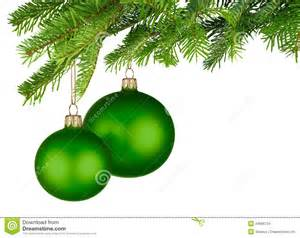 green baubles hanging from fresh green twigs stock images image 34686734