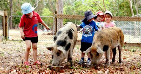 park ridge child care and preschool our menu 805 | 170203132620