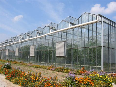 commercial greenhouses plastic greenhouse commercial